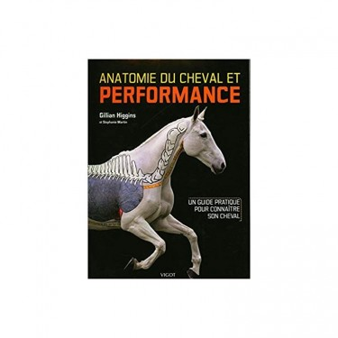 techniques equestres